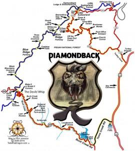 Diamondback 226